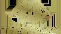 Kristin Eliza, NP Logo
